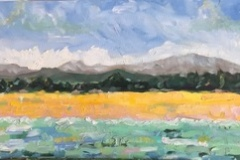 Pescadero-Beach-14x24-OIl-on-Canvas